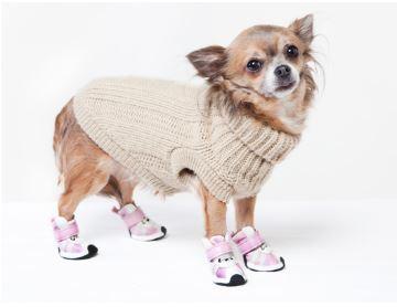Usos y Beneficios del Calzado para perros