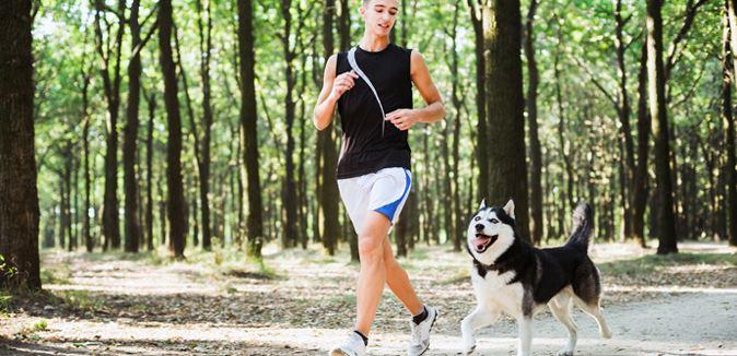 husky corriendo con el dueño