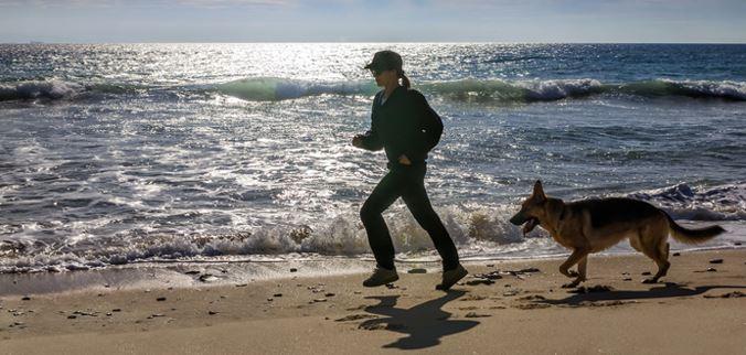 pastor alemán corriendo por la playa